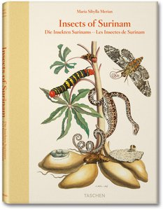 Maria Sibylla Merian. Insects of Surinam